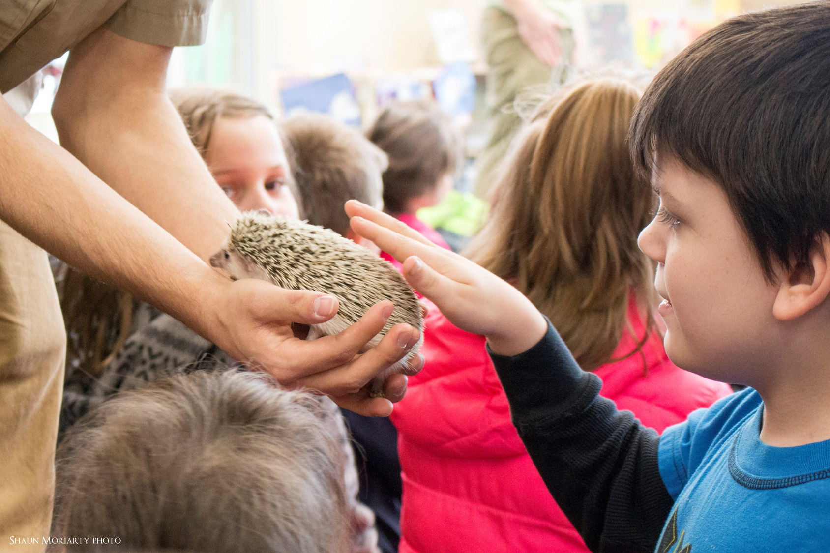 Traveling Zoo At Forest Park visits Jacob Edwards Library