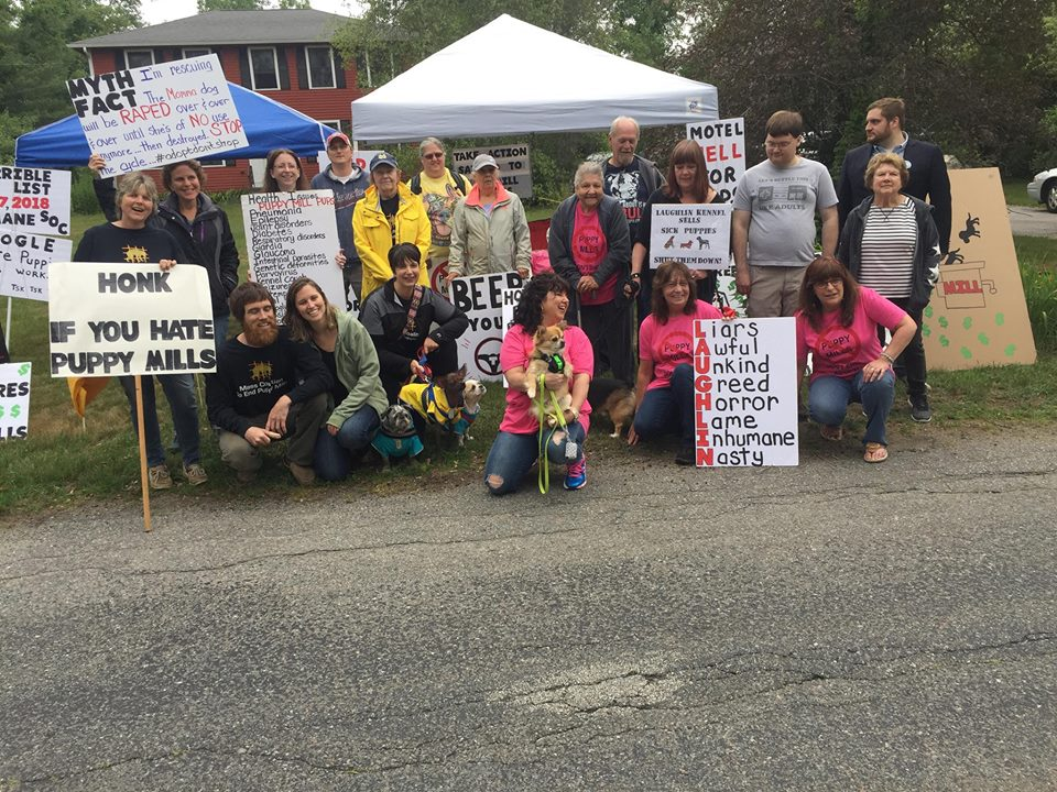 Protest Group Gains Victory Over Laughlin Kennels